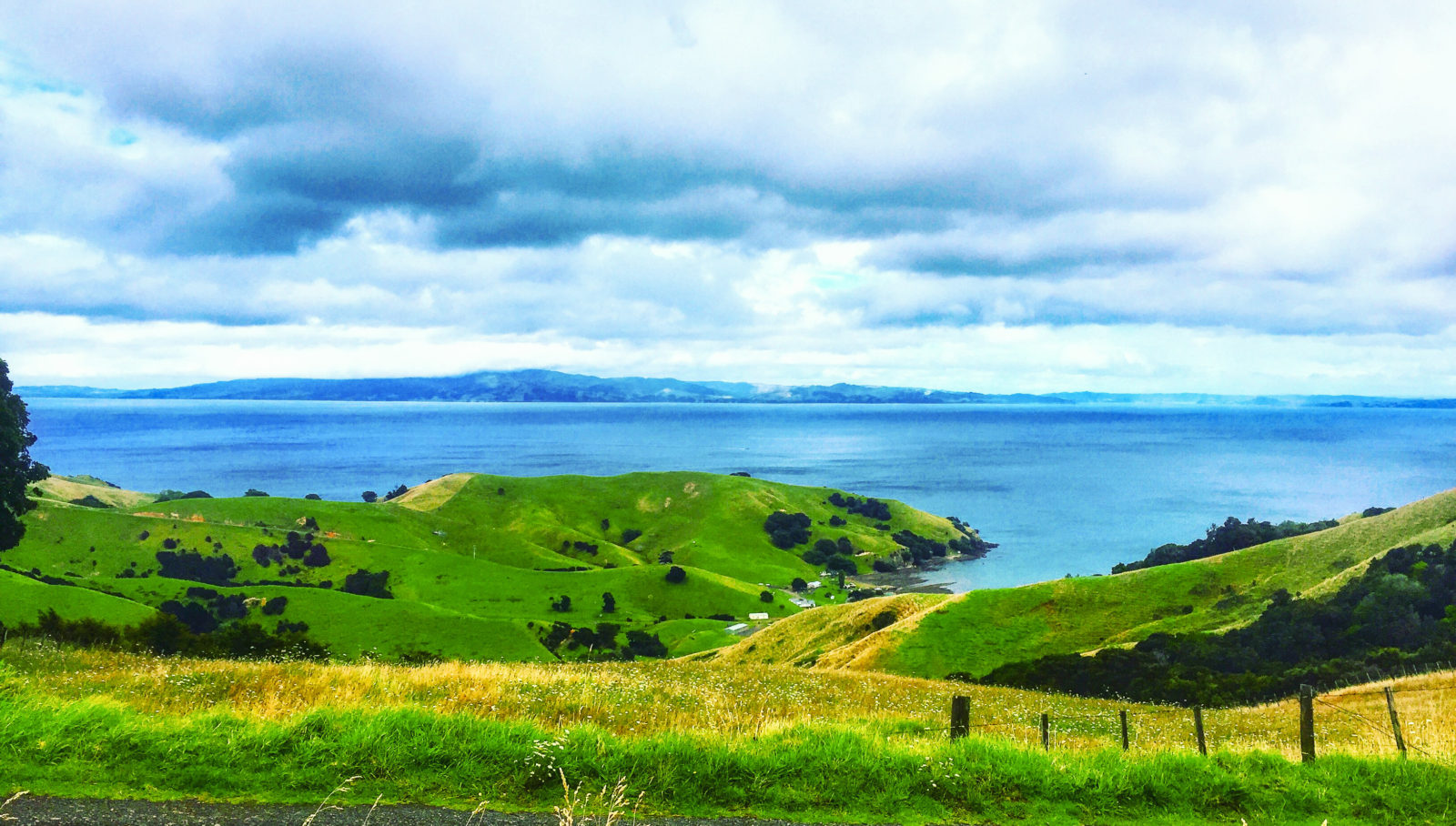 Drive from Thames to Coromandel Town