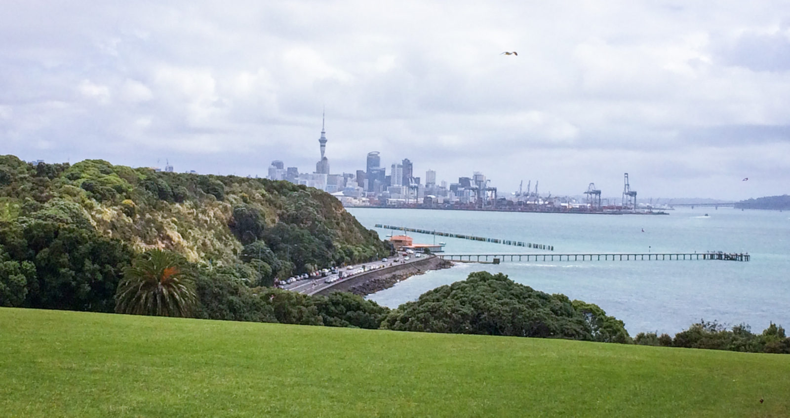 Bastion Point Lookout