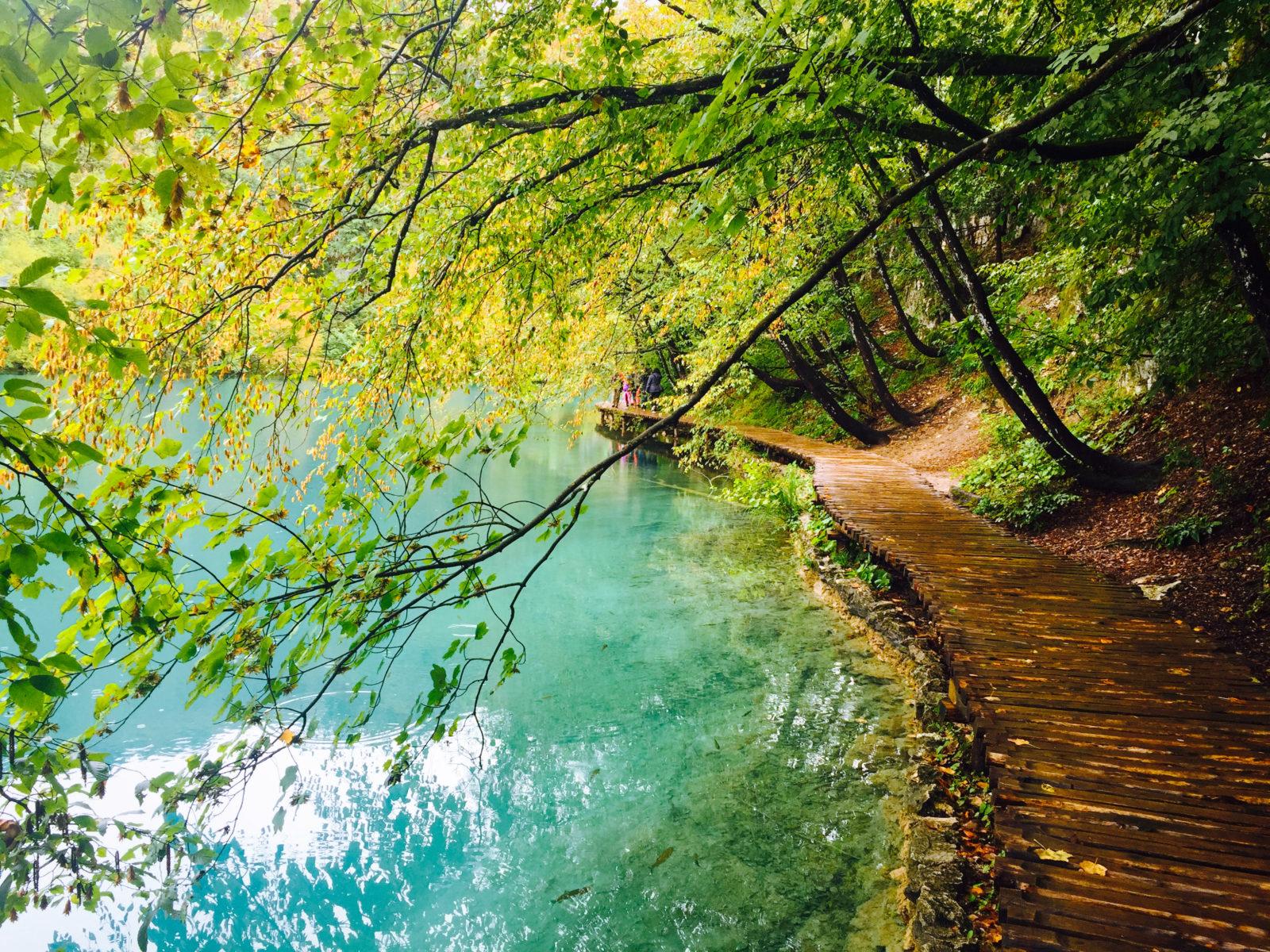 The shaded walking path along the lake