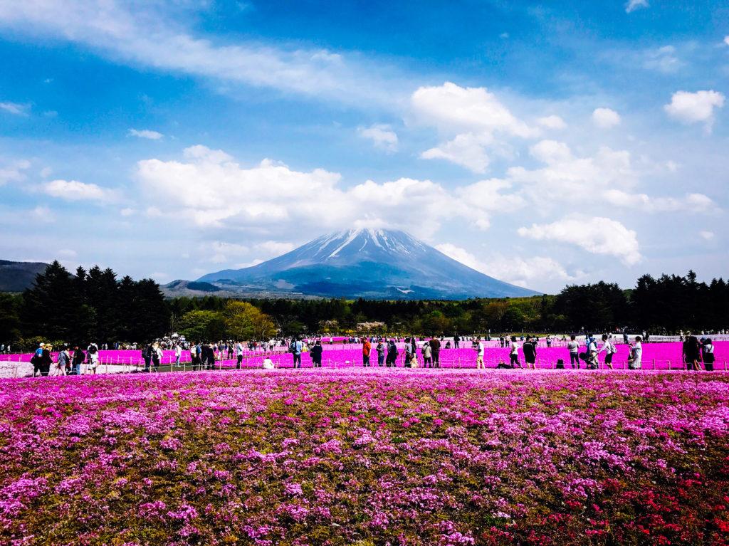 Mt Fuji, Japan