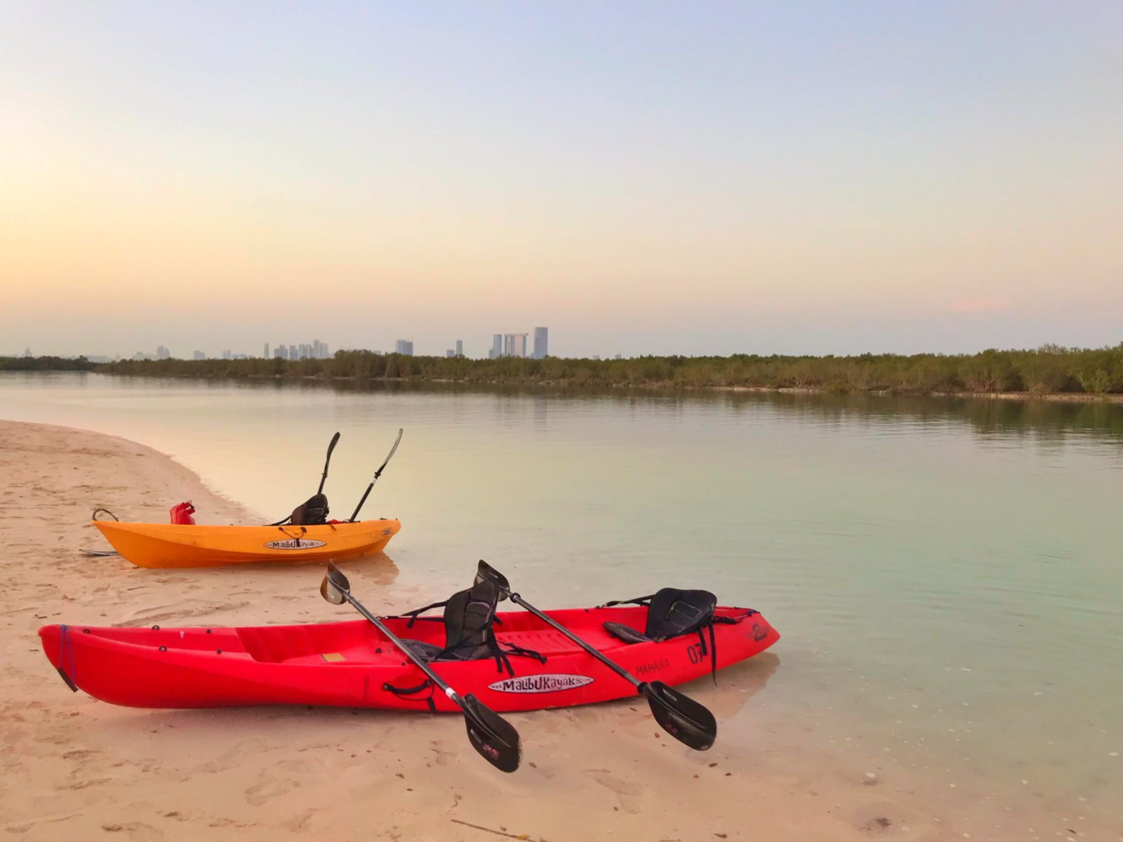mangrove kayaking in abu dhabi